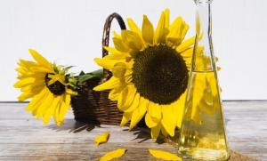 Minyak Biji Bunga Matahari
