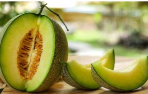 Ini Lho Manfaat Melon